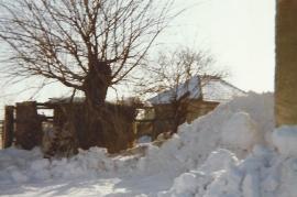 1986 133 Winter