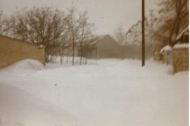 1986 135 Winter