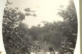 1948 11HF An der Leitha
