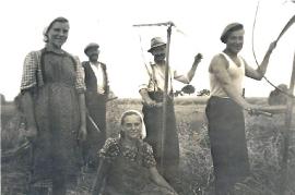 1940 beim Drusch 2M