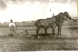 1948er Bauer beim Ackern 13HF