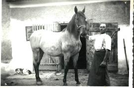 1950 Hr. Müllner 140BA