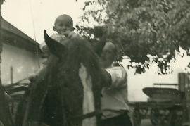1950er H. Amri, J. Amri und Pferd Heda 15AH
