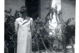 1950 P. Milleschitz 5MP
