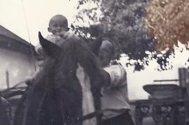 1949 H. u. J. Amri, Pferde li. Jumbo, r. Heda 74AH