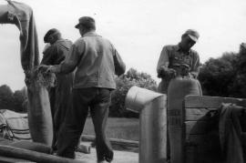 1960er Ernte mit dem 1. Mähdrescher 29HR
