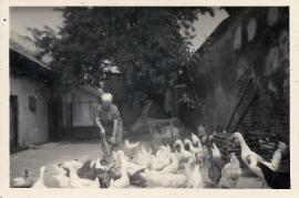 1960er Fr. Weiss 63WB