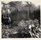 1957 W. Frank 7T