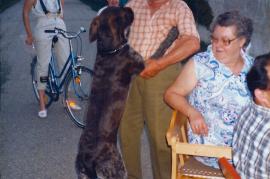 1988 Gassenfest Lagergasse J. Hoffmann tanzt mit dem Hund gekommen, 31DEM