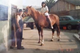 3 Pferd Ausritt