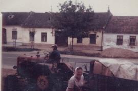 1975 Matthias Liedl, Maria Liedl 71LÖ