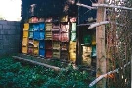 1980 Bienenhütte P. Milleschitz 85MP